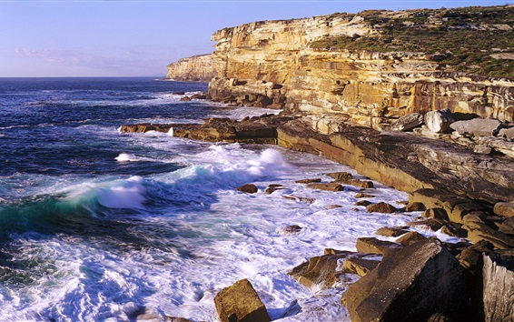 Wallpaper Cliffs and ocean, waves, Royal National Park, New South Wales, Australia