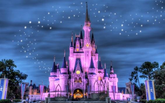 Wallpaper Disneyland, castle, night, lights, stars, purple style
