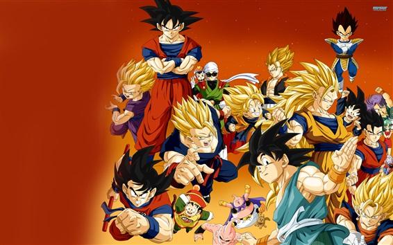 Fond d'écran Dragon Ball Z Anime HD