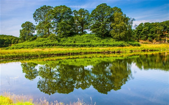 Wallpaper England nature scenery, trees, grass, lake, water reflection