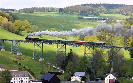 Wallpaper Erzgebirge, Saxony, Germany, bridge, train, pasture, houses