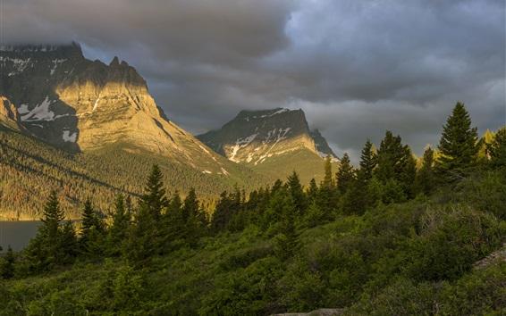 Fondos de pantalla Parque Nacional Glacier, Montana, EE.UU., bosque, árboles, montañas, nubes