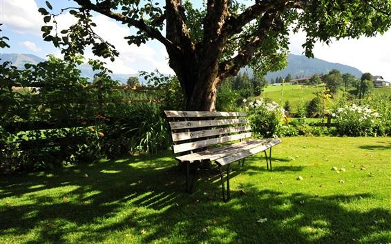 Wallpaper Kitzbuhel, Austria, summer, trees, bench, grass