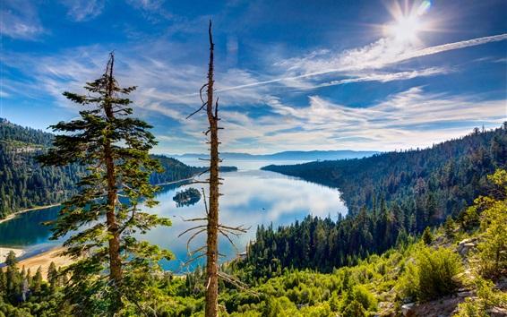 Papéis de Parede Lake Tahoe, Califórnia, EUA, vista de cima, floresta