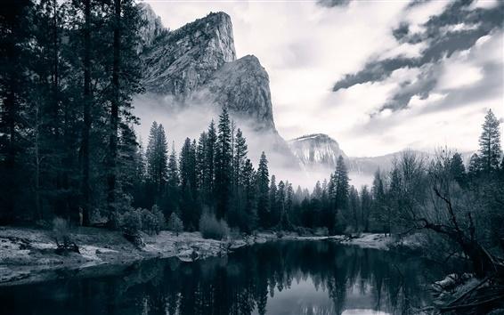 Обои Мерсед реки, Национальный парк Йосемити, река, долина, деревья, рассвет, США