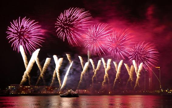 壁紙 夜の街の空、美しい花火、川