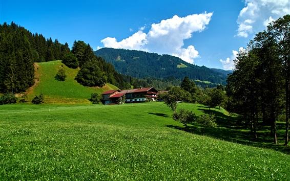 Papéis de Parede Obernau, Alemanha, montanhas, grama, casas
