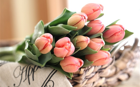 Wallpaper Pink tulips, bouquet, flower buds