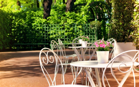 Wallpaper Sankt Petersburg, Summer Garden, Russia, rest area, table, chair