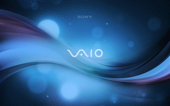 Обои Sony Vaio логотип, синий абстрактный фон