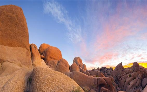 Wallpaper Stones, rocks, Joshua Tree National Park, California, USA