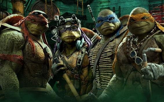 Wallpaper Teenage Mutant Ninja Turtles movie HD