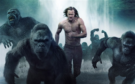Papéis de Parede The Legend of Tarzan 2016