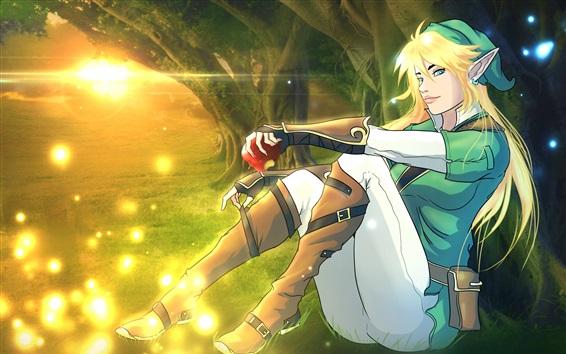 Wallpaper The Legend of Zelda, sun, game art