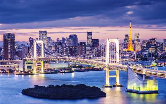 Wallpaper Tokyo, Japan, beautiful city night, skyscrapers, bay, bridge, illumination
