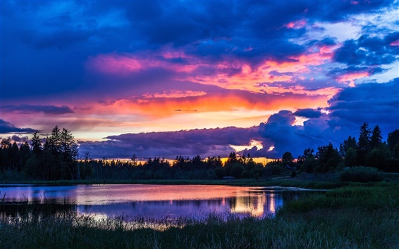 Wallpaper Trees, sky, clouds, lake, grass, sunset