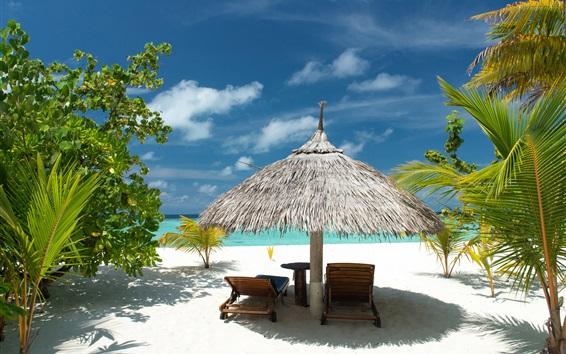 Обои Тропический пляж, песок, пальмы, море, отдых, лето