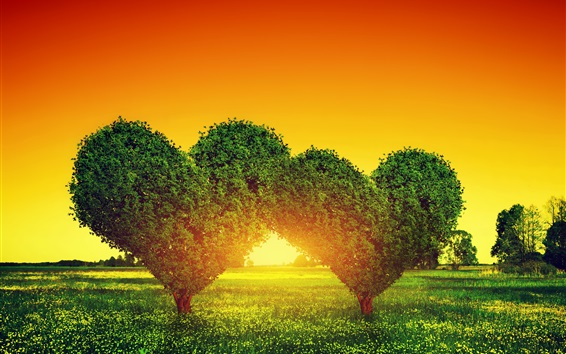 Wallpaper Two love hearts trees, grass, sunset