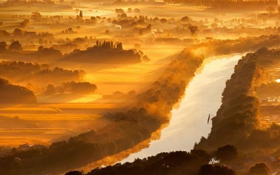 Wallpaper Valley of Yser, Belgium, river, trees, morning, fog, sun rays