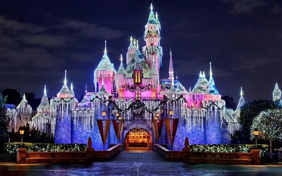 Wallpaper Wonderful Disneyland, amazing castle, beautiful lights, California, USA