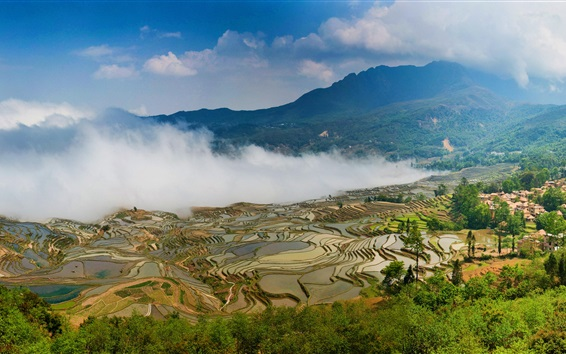 Wallpaper Yuanyang terraces, China Yunnan, beautiful view, fog, mountains