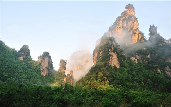 Wallpaper Zhangjiajie beautiful mountain scenery, cliffs, fog, forest, China