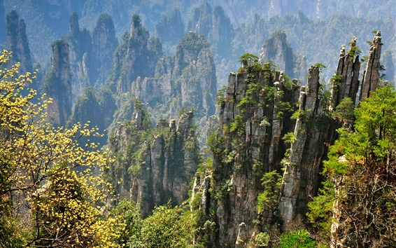 Wallpaper Zhangjiajie beautiful natural scenery, rocky mountain cliffs, China