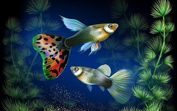 Fond d'écran Les poissons d'aquarium au sous-marin, l'herbe de l'eau, la conception créative