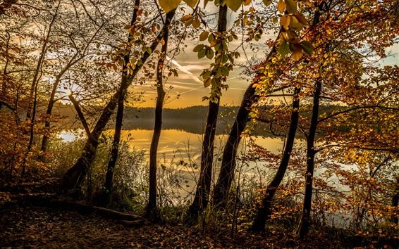 Fond d'écran Automne, forêt, arbres, lac, nuages, crépuscule