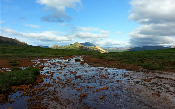 Обои Национальный парк Денали, Аляска, США, лужайка, горы, облака