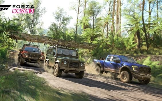 Fondos de pantalla Forza Horizon 3