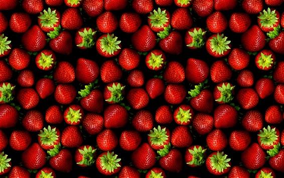 Fond d'écran fraises fraîches, fruits juteux