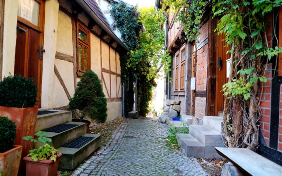 Wallpaper Germany, Quedlinburg, alley, home, house, travel place