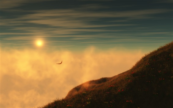 Wallpaper Grass, sunrise, mountain, sky, clouds, seagulls flying