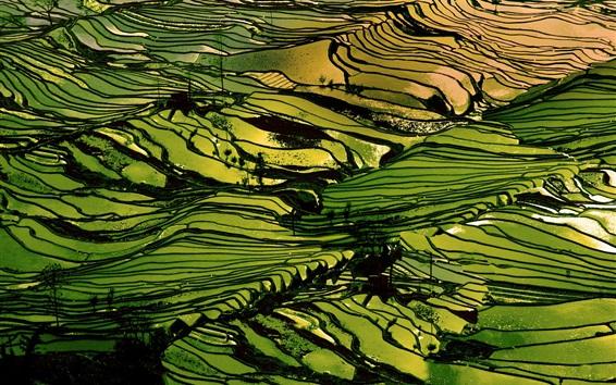 Papéis de Parede Hani Terraces, bela paisagem, China