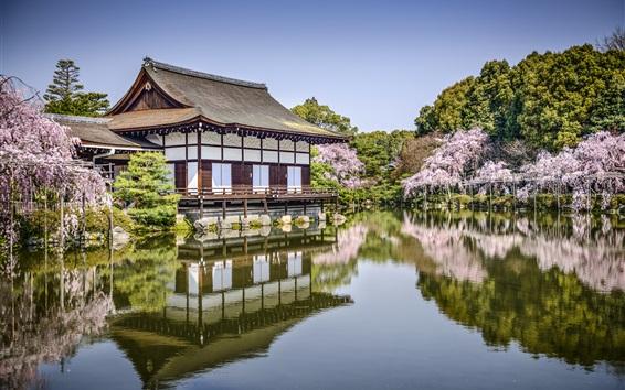 Fond d'écran Heian Jingu, Kyoto, Japon, fleurs, étang, ressort