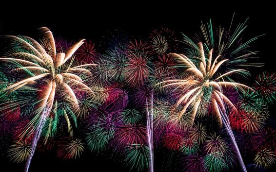 Wallpaper Holiday fireworks, sky, night