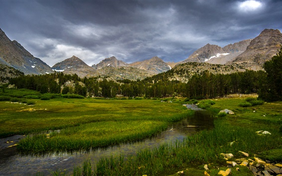 Wallpaper Inyo National Forest, California, USA, trees, grass, mountains, clouds