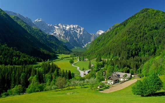 Wallpaper Logarska Dolina Valley, Slovenia, mountains, trees, houses, road