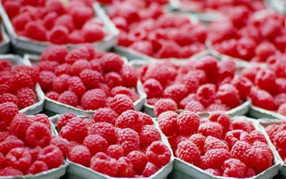 Wallpaper Many red raspberries, fruits photography