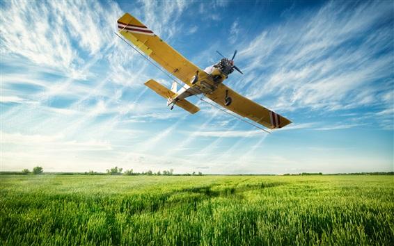 Wallpaper Multi purpose light aircraft flight in sky, fields