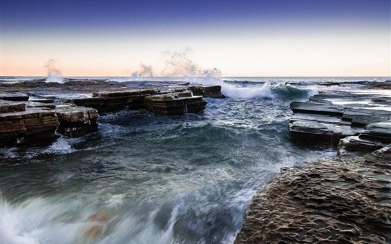배경 화면 노스 나라 빈, 시드니, 호주, 바다, 해안, 바위