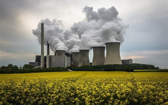 Wallpaper Power Plant, smoke, rape flowers field