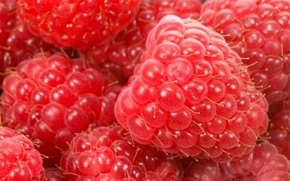 Wallpaper Red raspberries macro photography, fruits close-up