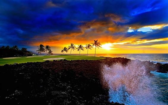 Wallpaper Seashore beautiful sunset, clouds, palm trees, sea waves, splashes
