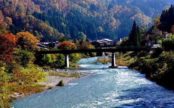 Fondos de pantalla Shirakawa-go, Japón, pueblo, río, puente, montaña, árboles