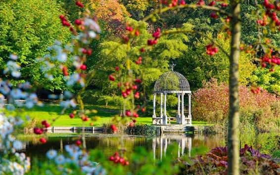 Wallpaper Springhead Gardens, England, park, lake, gazebo, trees, berries