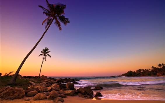 Fond d'écran Sri Lanka coucher du soleil, mer, côte, plage, des rochers, des palmiers