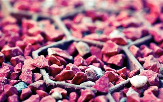 Wallpaper Still life, many pink stones