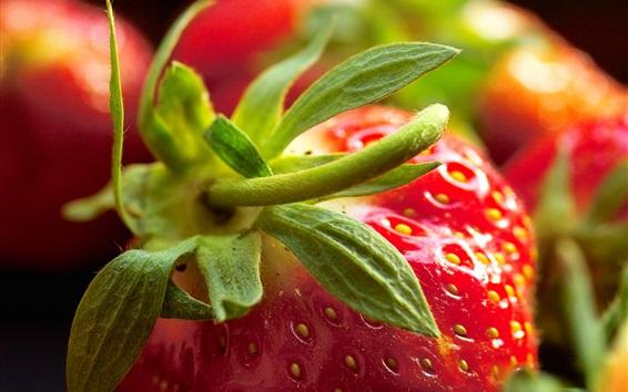 Wallpaper Strawberry macro photography, juicy fruit